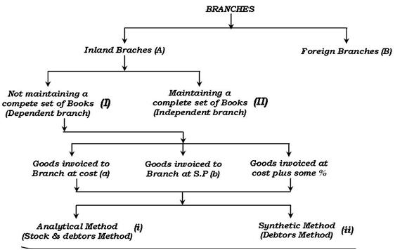 classification of branches